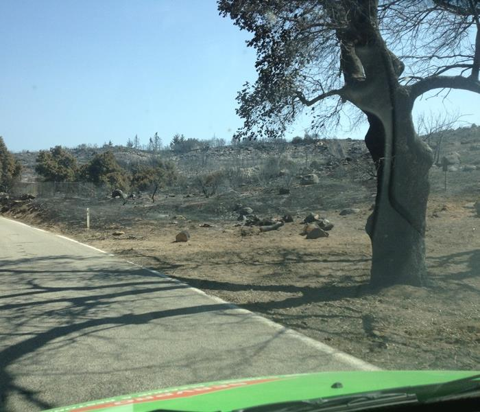 Wildfire:Scorched Earth- Singerton, CA fire 2013