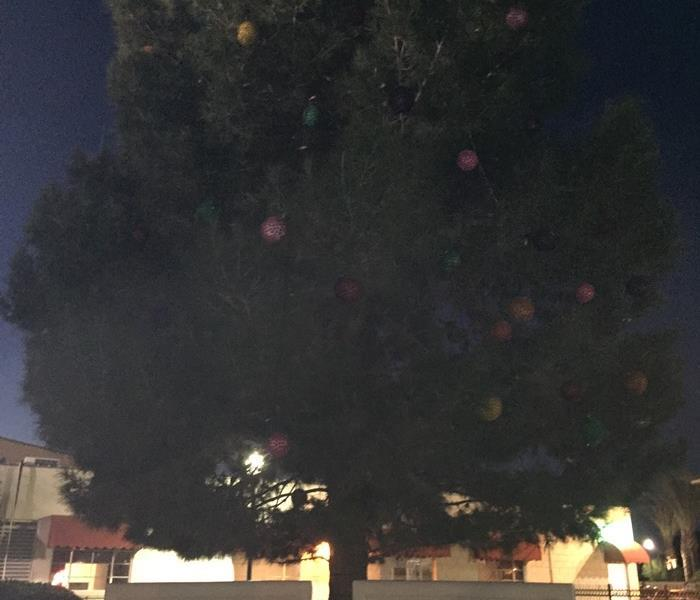 Community City of Coachella ChristmasTree