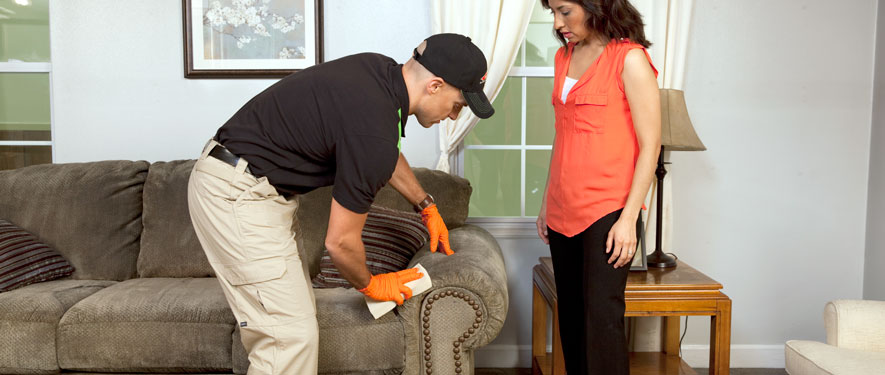 Indian Wells, CA carpet upholstery cleaning