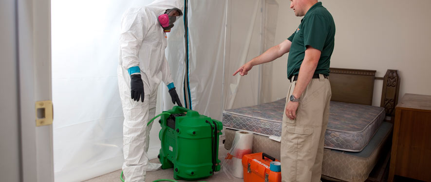 Indian Wells, CA mold removal process